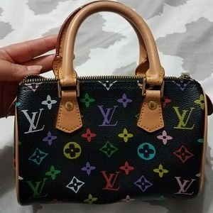Louis vuitton  mini purse